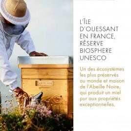 Abeille Royale Black Bee Honey Balm | Extra-Nutrition Peaux sèches et fragilisées