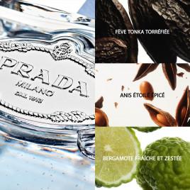 Les Infusions de Prada - Amande | Eau de Parfum