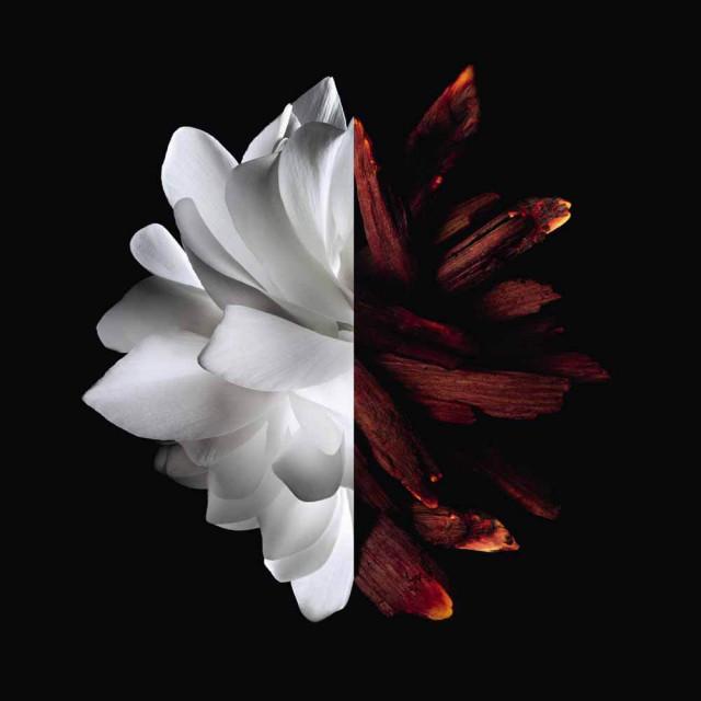 L'Interdit| Eau de Parfum Rouge